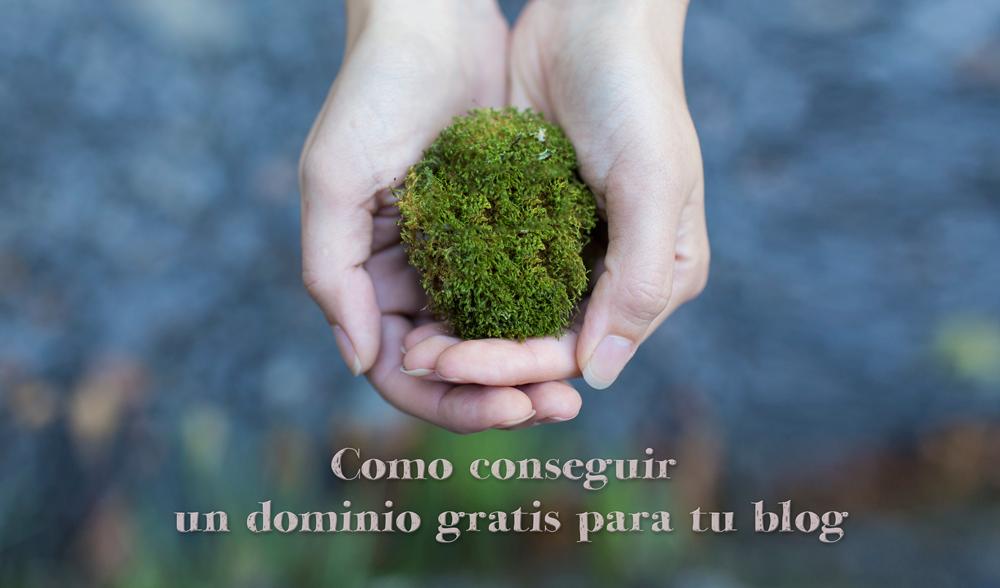 dominio-gratis-blog