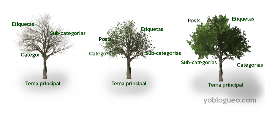 categorias en los blogs