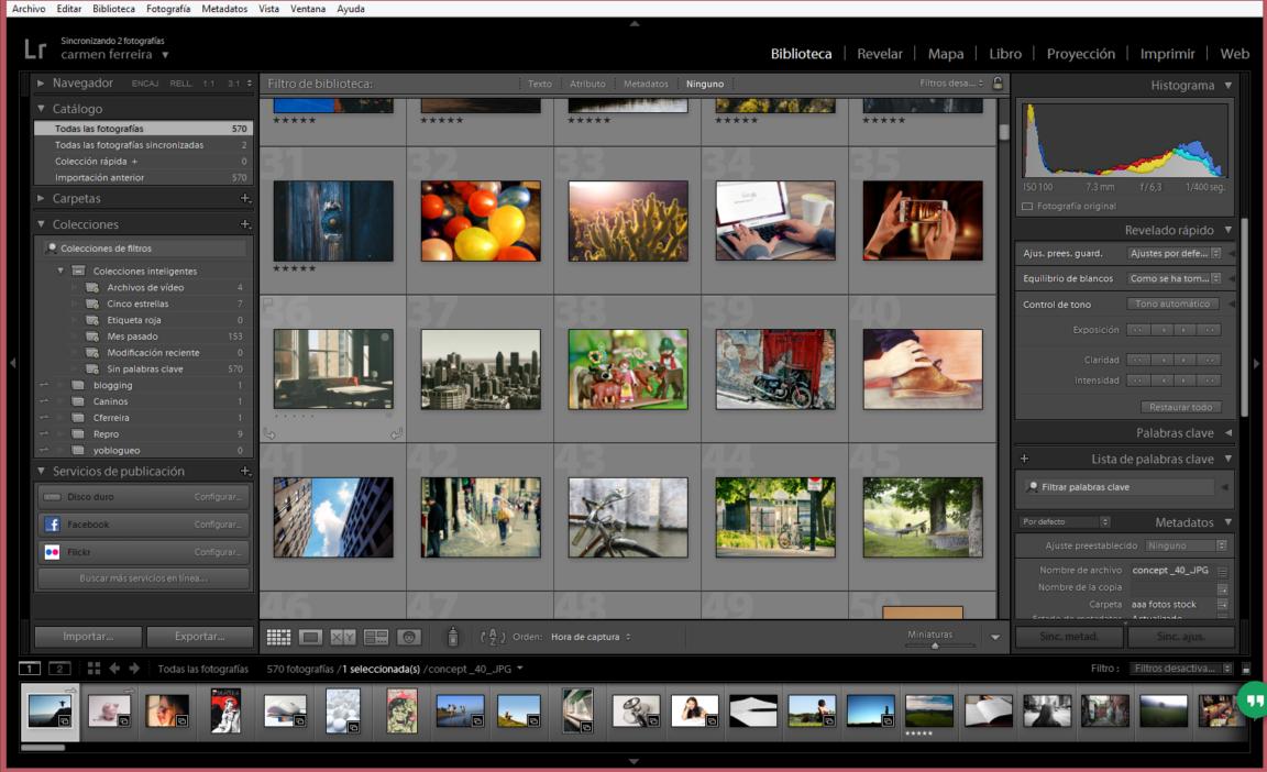 Programas para ordenar fotos gratis for Programa para amueblar cocinas gratis