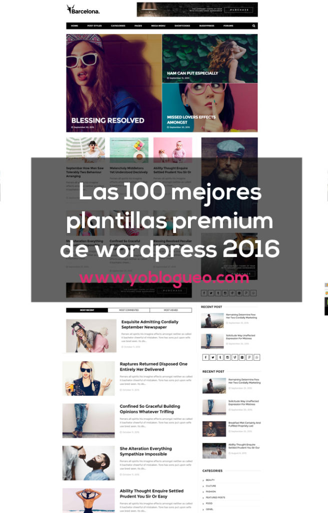 10-plantillas-premium-para-wordpress