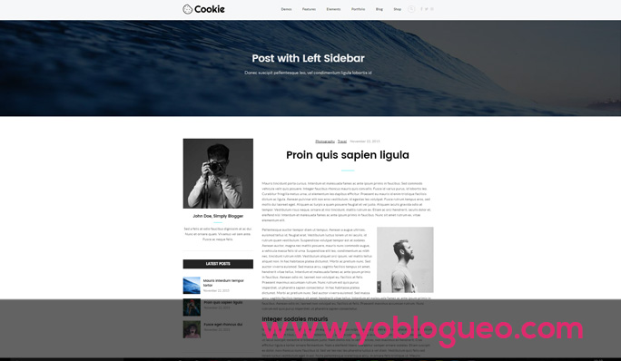 recomendaciones-para-plantillas-de-wordpress