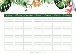 planner-semanal-tropical-monstera