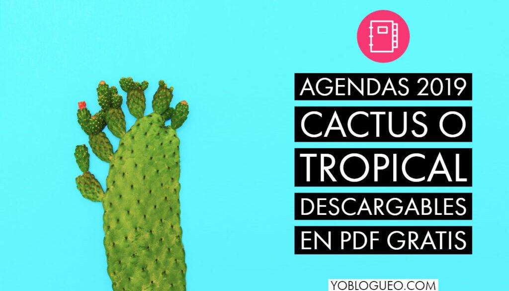 Agendas 2019 Cactus o Tropical descargables en PDF gratis