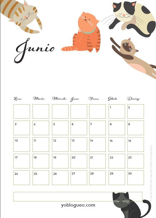 calendario gatos junio 2019