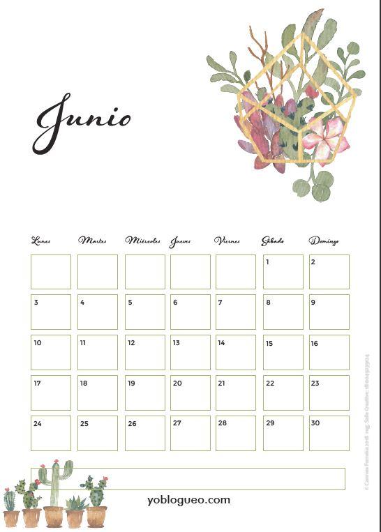 calendario junio 2019 con cactus colores