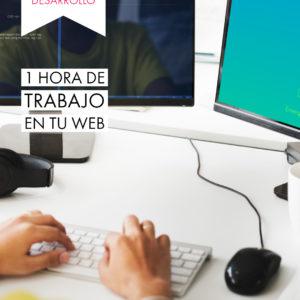 una hora de diseño web
